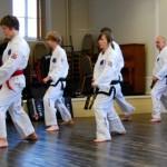 beccles-taekwondo-demo12