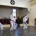 beccles-taekwondo-demo14