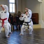 beccles-taekwondo-demo15