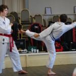 beccles-taekwondo-demo36