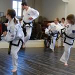 beccles-taekwondo-demo45
