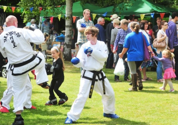 Beccles Hospital Summer Fete. PIC: Nick Butcher