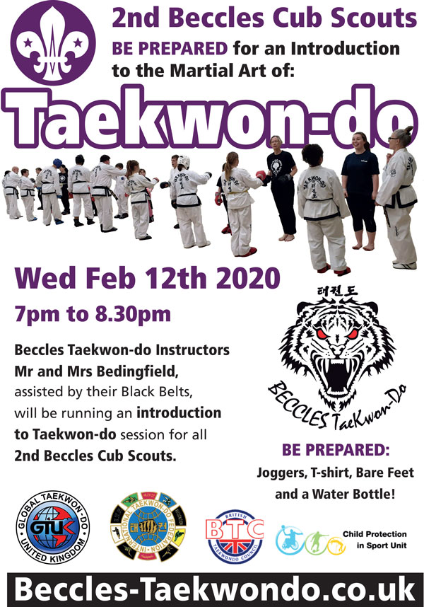 Introductory Taekwondo class